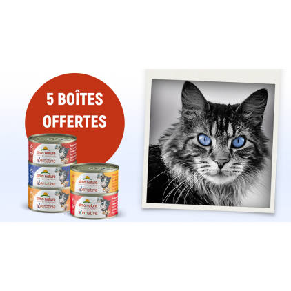 5 boites HFC Alternative chat Almo Nature - 70g - Sans Céréales - GRATUITES