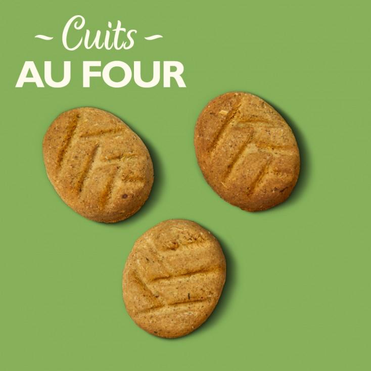 Biscuits Bio pour le coucher Lily's Kitchen