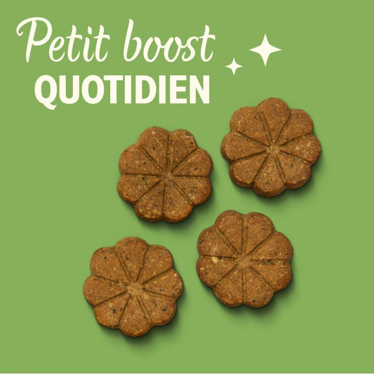 Biscuits Bio au foie de boeuf Lily's Kitchen