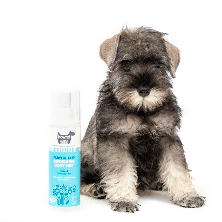 Playfull pup body mist - hownd with dog