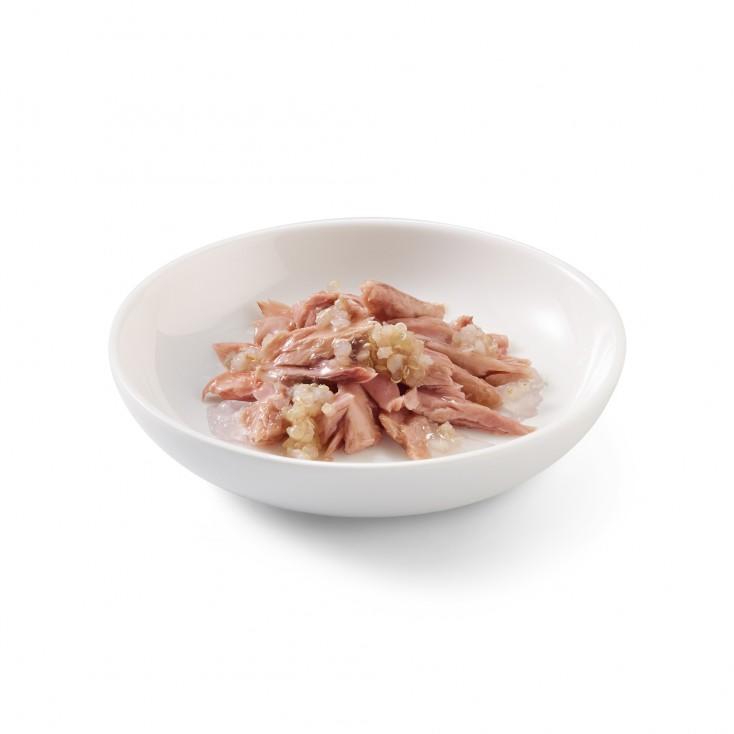 Schesir exclu web - Pack de 6 boites x 85g chat en gelée Thon quinoa assiette