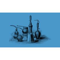 Parfum pour chien