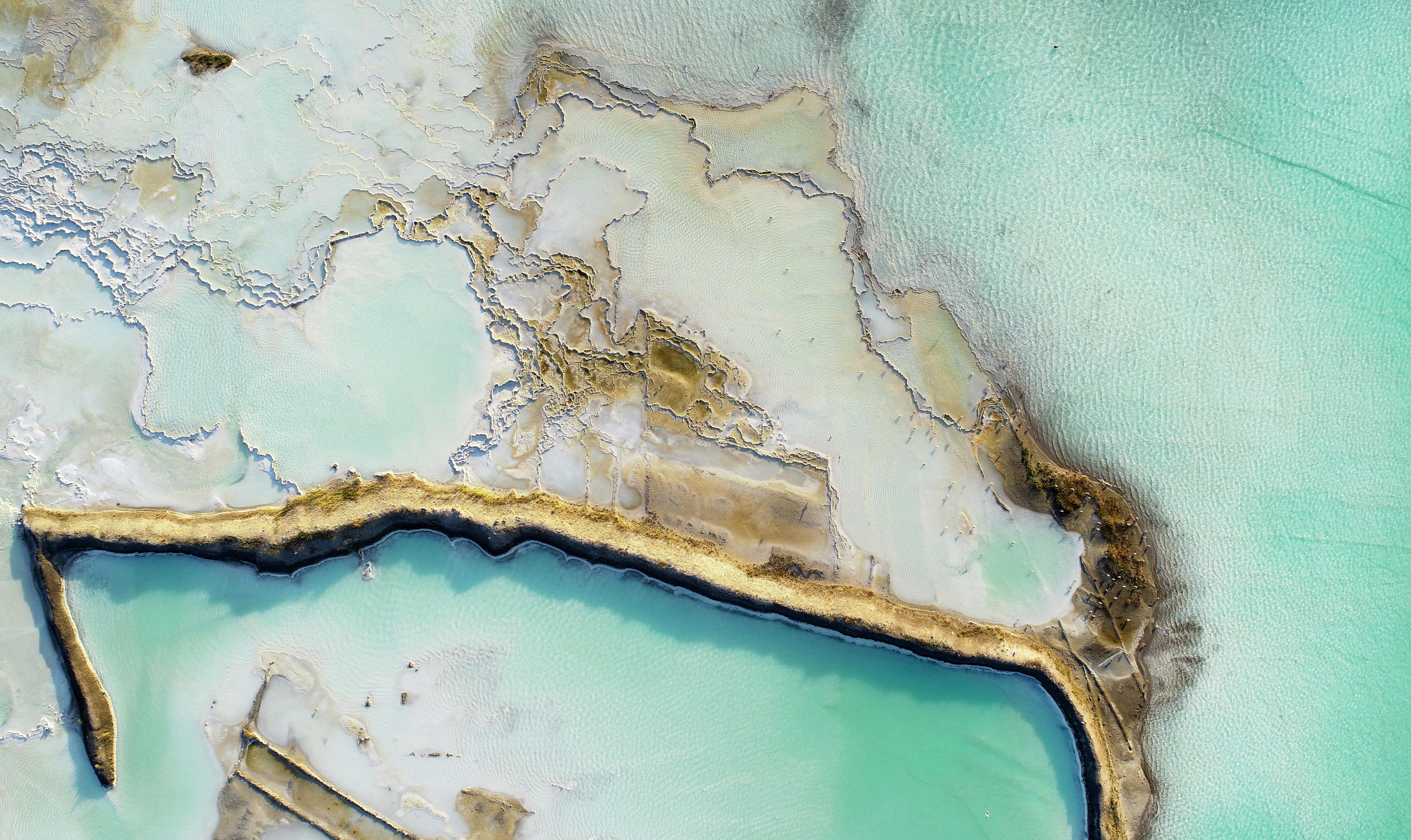acheter de la terre de diatomee